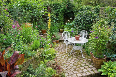 Small Garden Malaysia Make Your Own Small Garden With Us